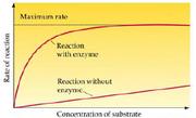 Cellular energetics1