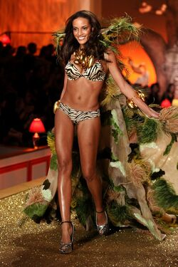 VS2010-SelitaEbanks