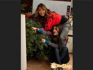 Tori and Trina's tree