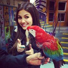 Larry the Bird