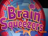 Brain Squeezers (game show)