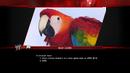 EDBW Loading macaw