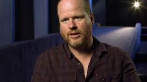 Avengers Age Of Ultron Joss Whedon On Taking On The Sequel