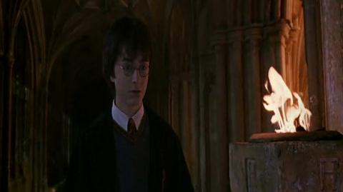 Harry Potter and the Chamber of Secrets - Another Attack