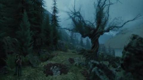 Harry Potter and the Prisoner of Azkaban - Into the Whomping Willow