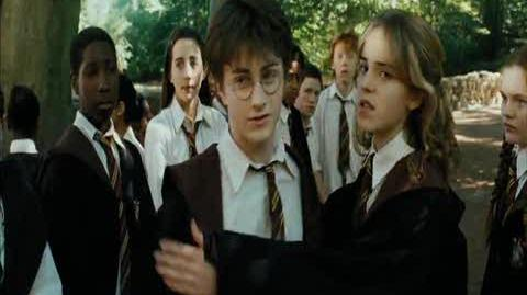 Harry Potter and the Prisoner of Azkaban - Care for magical creatures