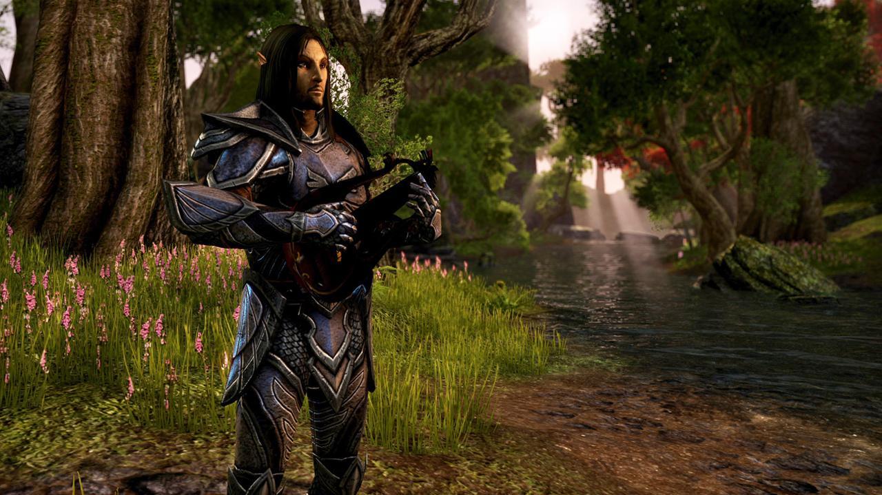 What Can You Look Like In Elder Scrolls Online?