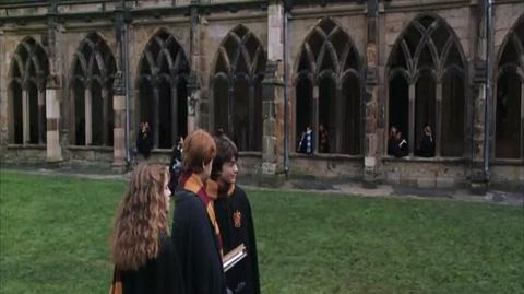 Harry Potter and the Chamber of Secrets - Riddle's Diary's Gone