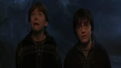 Harry Potter and the Chamber of Secrets - The Aragog