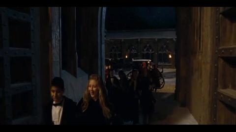 Harry Potter and the Goblet of Fire - Ron's dress robes
