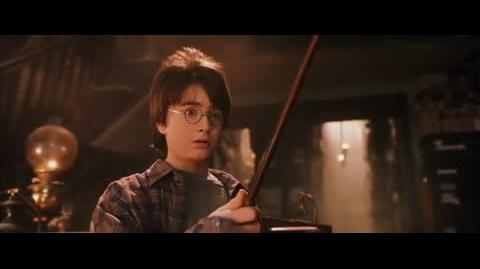 Harry Potter and the Sorcerer's Stone - Harry gets his wand