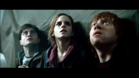 Harry Potter and the Deathly Hallows Part 2 (2011) - TV Spot Confront Your Fate