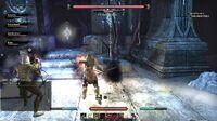 The Elder Scrolls Online High-Level Dungeon Battle