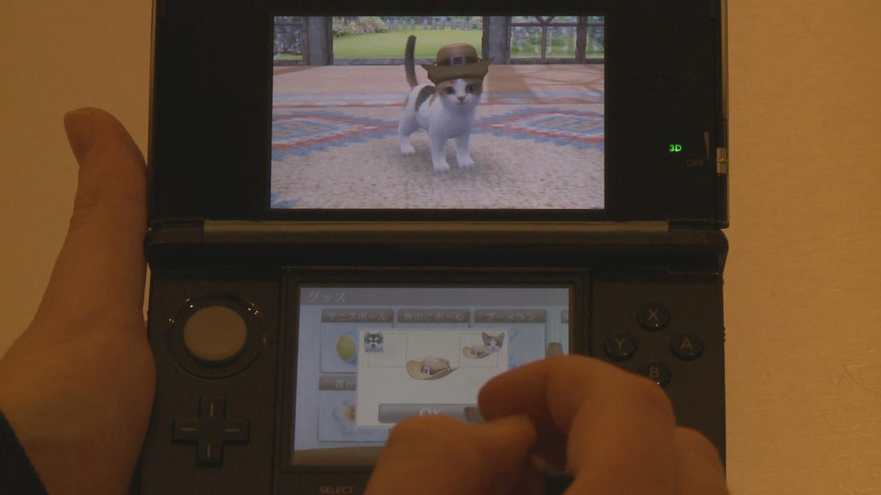 Nintendogs & Cats Cat & Dog Gameplay