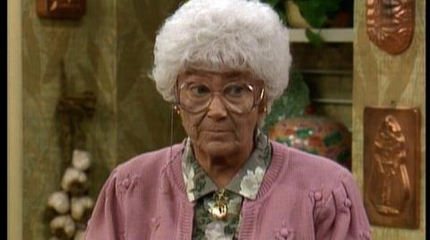 Golden Girls The Complete Collection (2010) - Clip Sophias Boxer