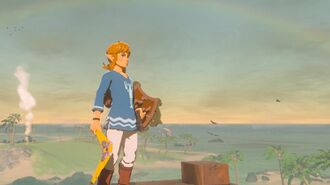Zelda Breath of the Wild - Island Lobster Shirt Location (EX Treasure Garb of the Winds)