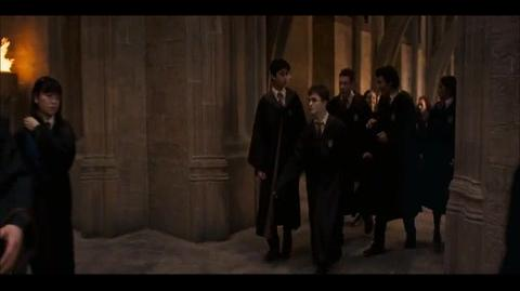 Harry Potter and the Order of the Phoenix - Trelawney is sacked