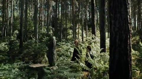 Harry Potter and the Prisoner of Azkaban - Asking Lupin for help