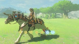 Zelda Breath of the Wild - Ancient Saddle and Bridle Locations (EX Ancient Horse Rumors)