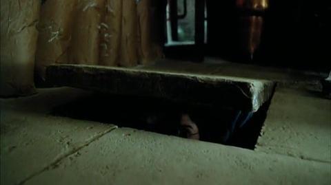 Harry Potter and the Prisoner of Azkaban - Honeydukes