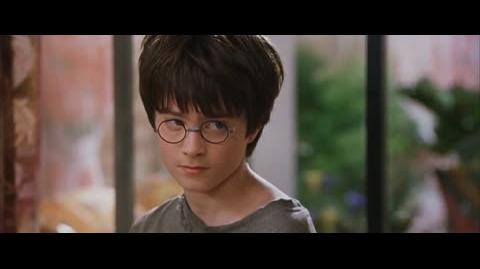 Harry Potter and the Sorcerer's Stone - Dudley's birthday