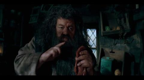 Harry Potter and the Order of the Phoenix - Hagrid's tale