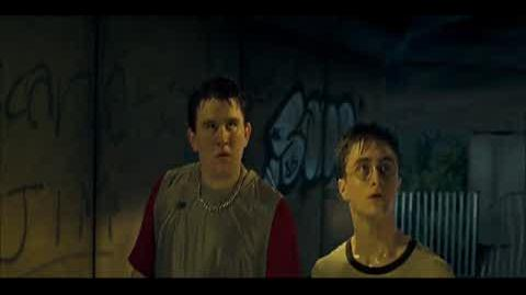 Harry Potter and the Order of the Phoenix - Dudley demented