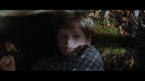 Batman Begins - Young Bruce