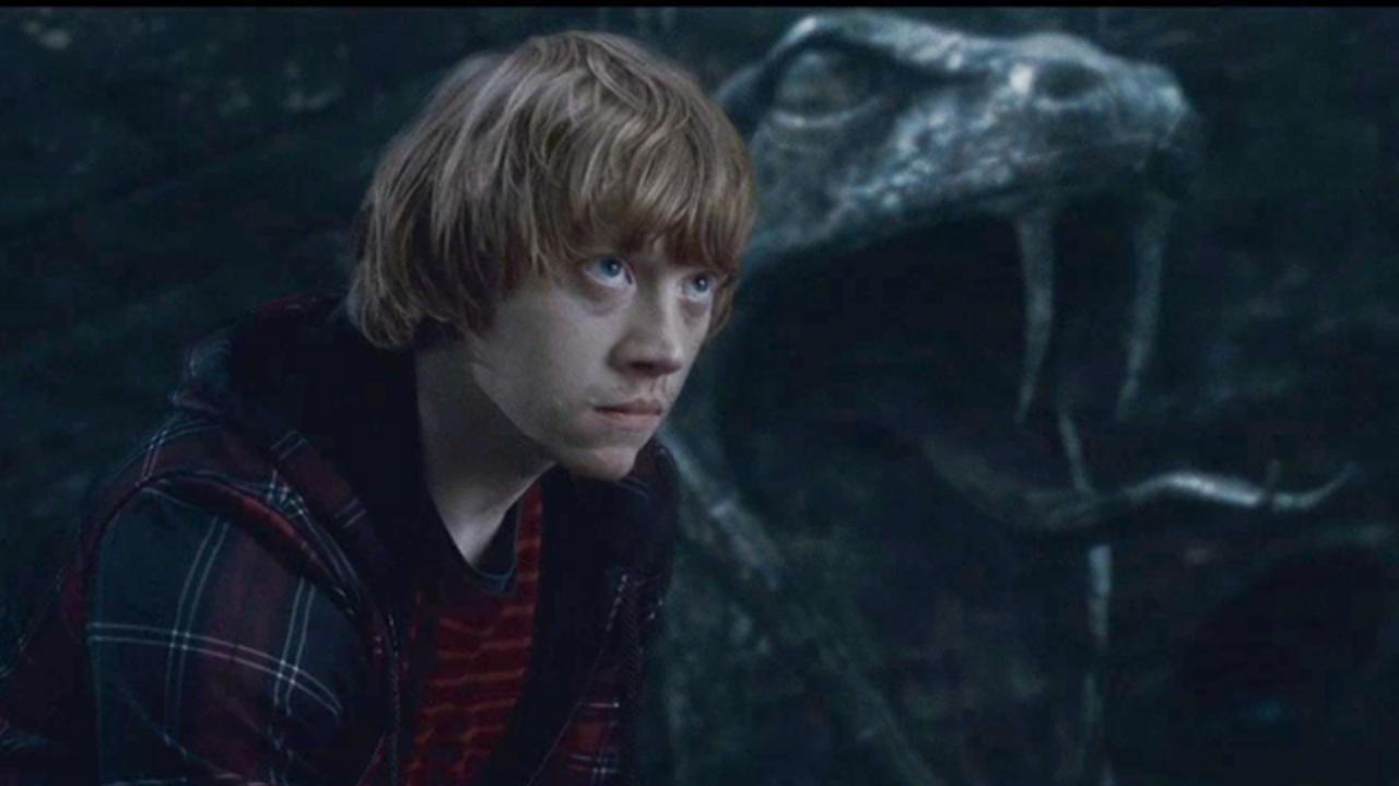 Harry Potter and the Deathly Hallows Clip - You Do It