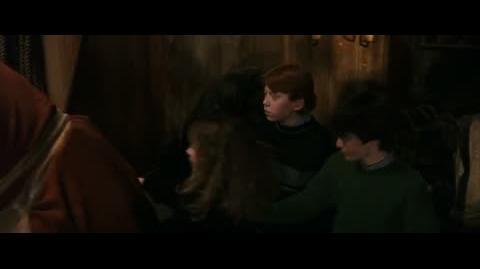 Harry Potter and the Sorcerer's Stone - Norbert the Norwegian Ridgeback