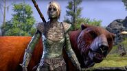 The Elder Scrolls Online Morrowind Official Warden Gameplay Trailer