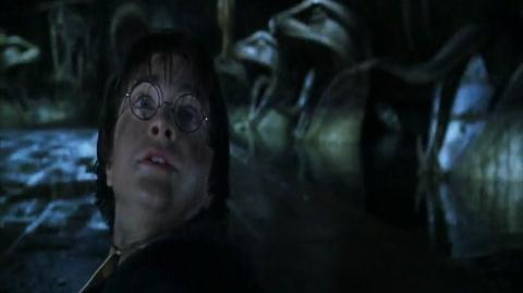 Harry Potter and the Chamber of Secrets - Running away from the Basilisk