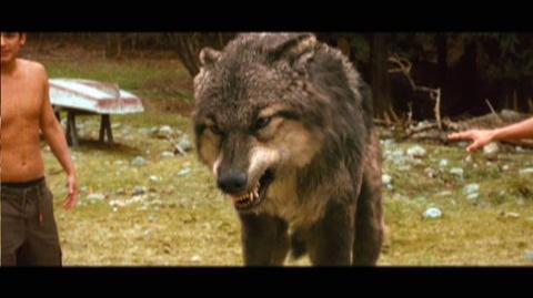 The Twilight Saga New Moon (2009) - Featurette Wolfpack 2