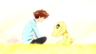 Why We're Excited for the Digimon Movie Series