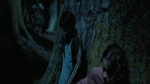 Harry Potter and the Prisoner of Azkaban - Buckbeak and the werewolf