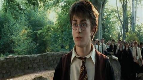 Harry Potter and the Prisoner of Azkaban - Patting Buckbeak