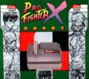 Pro Fighter X