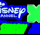 Disney Channel XD Smash Zone