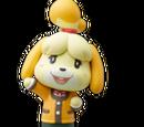 Amiibo Journey/Playable Characters
