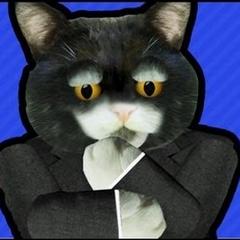 Preisdent Black Cat