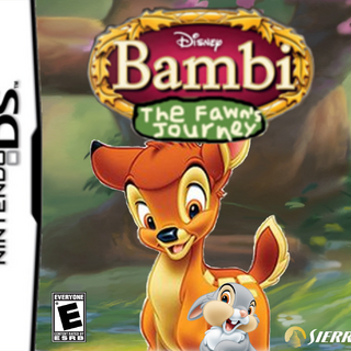 Nintendo DS Game Cover