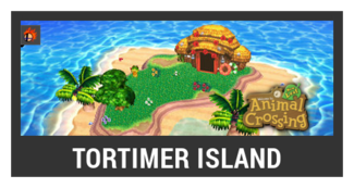 Super Smash Bros. Strife stage box - Tortimer Island