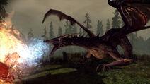 Dragon Age Poczatek