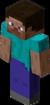 Minecraft gracz