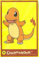 Pokemon Pasta Charmander Card