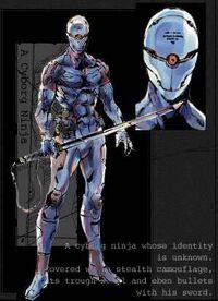 Gray Fox Ninja