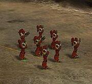 Escuadra de marines