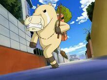 Ponygon 1