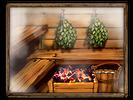 Viking sauna