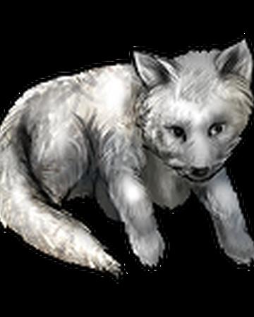 Arctic Fox Pup Vikingclan Wiki Fandom